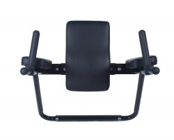 Ultimate Body Press Wall Mounted Dip Bars