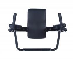 Ultimate Body Press Wall Mounted Dip Bars