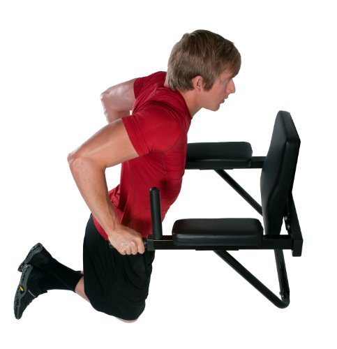 Ultimate Body Press Wall Mounted Dip Station Strength